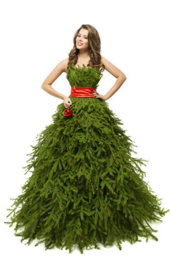 Sustainable Christmas dressing